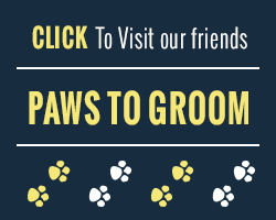 pawstogroom